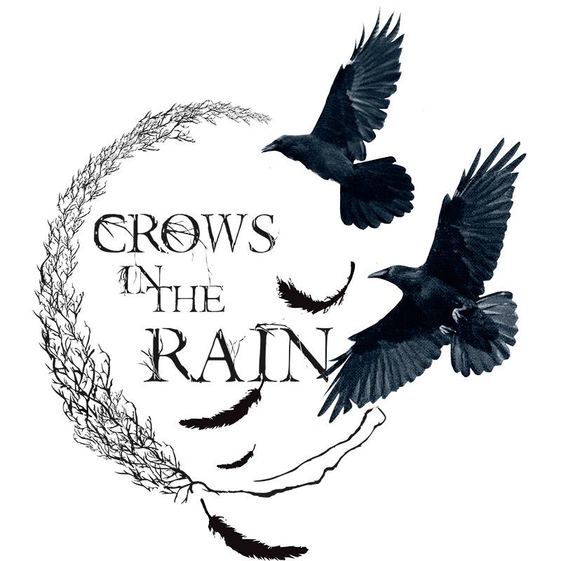 雨鸦 Crow in the Rain